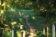 一条道路在一晴朗的9月天在公园 免版税库存照片