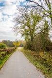 一条道路在秋季的公园 免版税库存图片