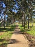 一条道路在Parramatta悉尼澳大利亚 免版税库存照片