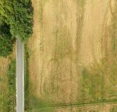 一条道路的抽象垂直的鸟瞰图在一个领域的与一些树和灌木在图片的角落 图库摄影