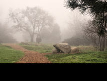 一条道路穿过一个公园在一有雾的天 免版税图库摄影