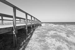 一条道路穿过沙丘 免版税库存照片