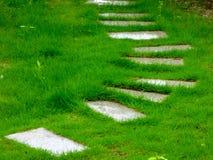 一条道路穿过草坪 免版税图库摄影