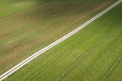 一条道路穿过领域 免版税库存图片