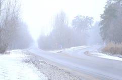 一条郊区柏油路的交叉路在bli期间的冬天 免版税库存照片