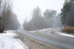 一条郊区柏油路的交叉路在bli期间的冬天 库存照片