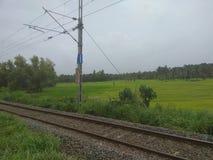 一条铁路轨道的看法在喀拉拉,印度 库存照片