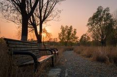 一条长凳在日落的城市公园 免版税库存图片