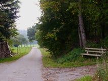 一条长凳在森林里在德国南部 免版税库存照片
