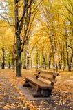 一条长凳在黄色和绿色树中的秋天公园 免版税库存照片