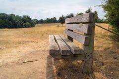 一条长凳在Pishiobury公园 库存图片