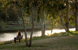 一条长凳的一名妇女在公园 免版税库存照片