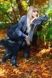 一条长凳的女孩在公园 库存照片