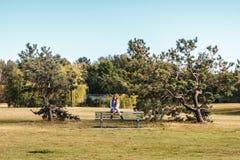 一条长凳的女孩在Vanier公园在温哥华,加拿大 免版税库存照片