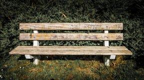 一条长凳的正面图在公园 库存图片