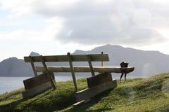 一条长凳 免版税图库摄影