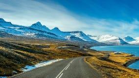 一条长的直路在冬天 免版税库存照片