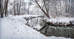 一条黑河在一个多雪的公园流动 库存照片