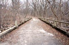 一条离开的道路穿过秋天的森林 免版税库存照片