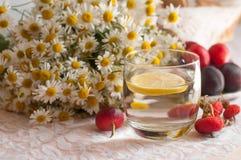 一杯与一个柠檬切片的水在它,成熟李子板材和春黄菊花束用臀部装饰的鞋带表面上的 免版税库存照片