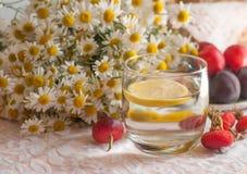 一杯与一个柠檬切片的水在它,春黄菊花束和成熟李子板材用臀部装饰的鞋带表面上的 免版税图库摄影