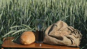 一杯俄国啤酒和面包在麦田 免版税库存图片