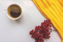 一杯咖啡、荚莲属的植物红色莓果和黄色编织了在白色背景的毛线衣 猬 免版税库存图片