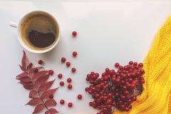 一杯咖啡、荚莲属的植物红色莓果和黄色编织了在白色背景的毛线衣 猬 免版税图库摄影
