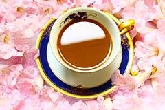 一杯咖啡在桃红色花背景的 库存图片