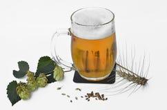 一杯啤酒用干大麦和啤酒花球果树 图库摄影