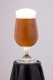 一杯啤酒 免版税库存图片