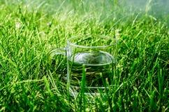 一杯在地面上的水 免版税库存照片
