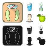一杯水,一个瓶酒精,一个冒汗的人,苹果 在动画片,黑样式的Diabeth集合汇集象 向量例证