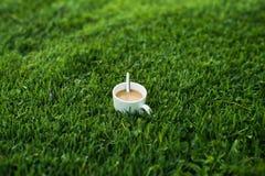 一杯热的咖啡在一个冷的早晨 库存照片