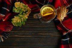 一杯热的茶用柠檬, 免版税库存图片