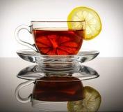 一杯玻璃茶用柠檬站立反射的表面上 库存照片