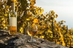 一杯白葡萄酒和被打开的瓶在葡萄园背景在秋天 Lavaux,瑞士 免版税库存图片