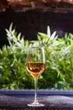 一杯白葡萄酒或苹果汁在好光的一张桌上站立有美好的绿色背景 免版税库存图片