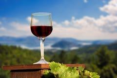 一杯红葡萄酒在卡斯托里亚市背景的一个葡萄园里 免版税库存图片