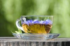 一杯茶与矢车菊的瓣的 免版税库存图片