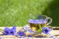 一杯茶与矢车菊的 免版税库存图片