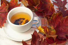 一杯茶在撒布与下落的叶子的桌上的 温暖 免版税库存照片
