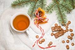 一杯茶用巧克力糖,一棵云杉的树的分支在织地不很细背景的 库存照片