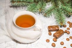 一杯茶用巧克力糖,一棵云杉的树的分支在织地不很细背景的 免版税库存图片