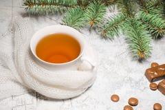 一杯茶用巧克力糖,一棵云杉的树的分支在织地不很细背景的 库存图片
