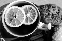 一杯茶用柠檬片-黑白 图库摄影