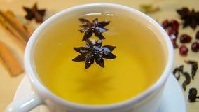 一杯茶用茴香 股票录像
