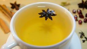 一杯茶用茴香 股票视频