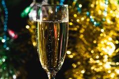 一杯香槟在圣诞树下 库存图片