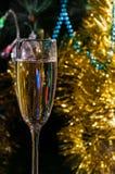 一杯香槟在圣诞树下 免版税库存图片